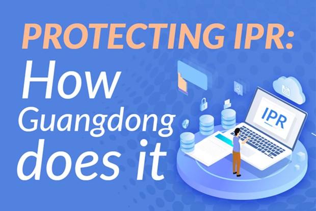 Infographics | Protecting intellectual property rights: How Guangdong does it